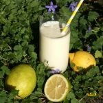 Lemon Cheesecake Smoothie